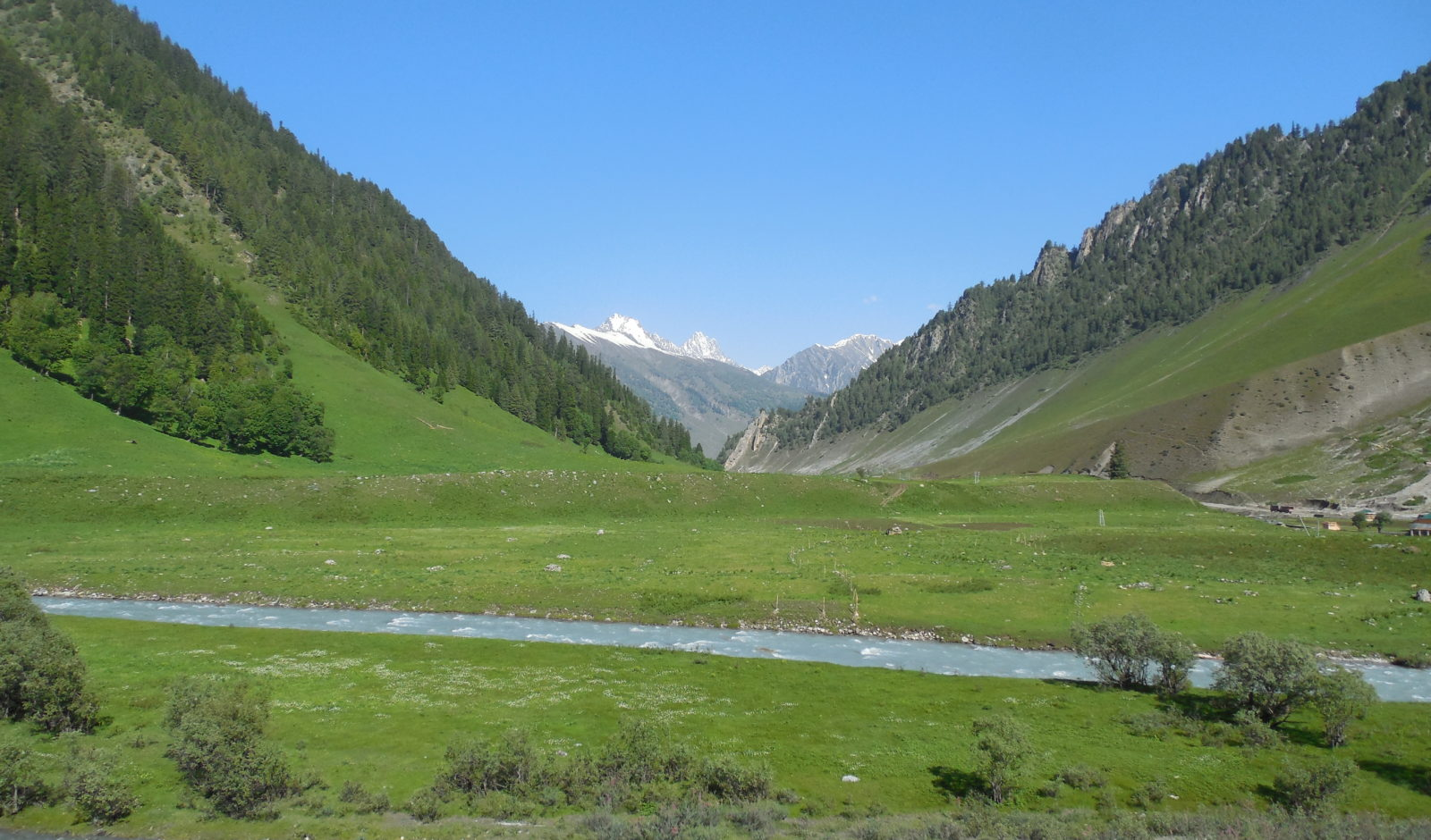 green valleys in Srinagar