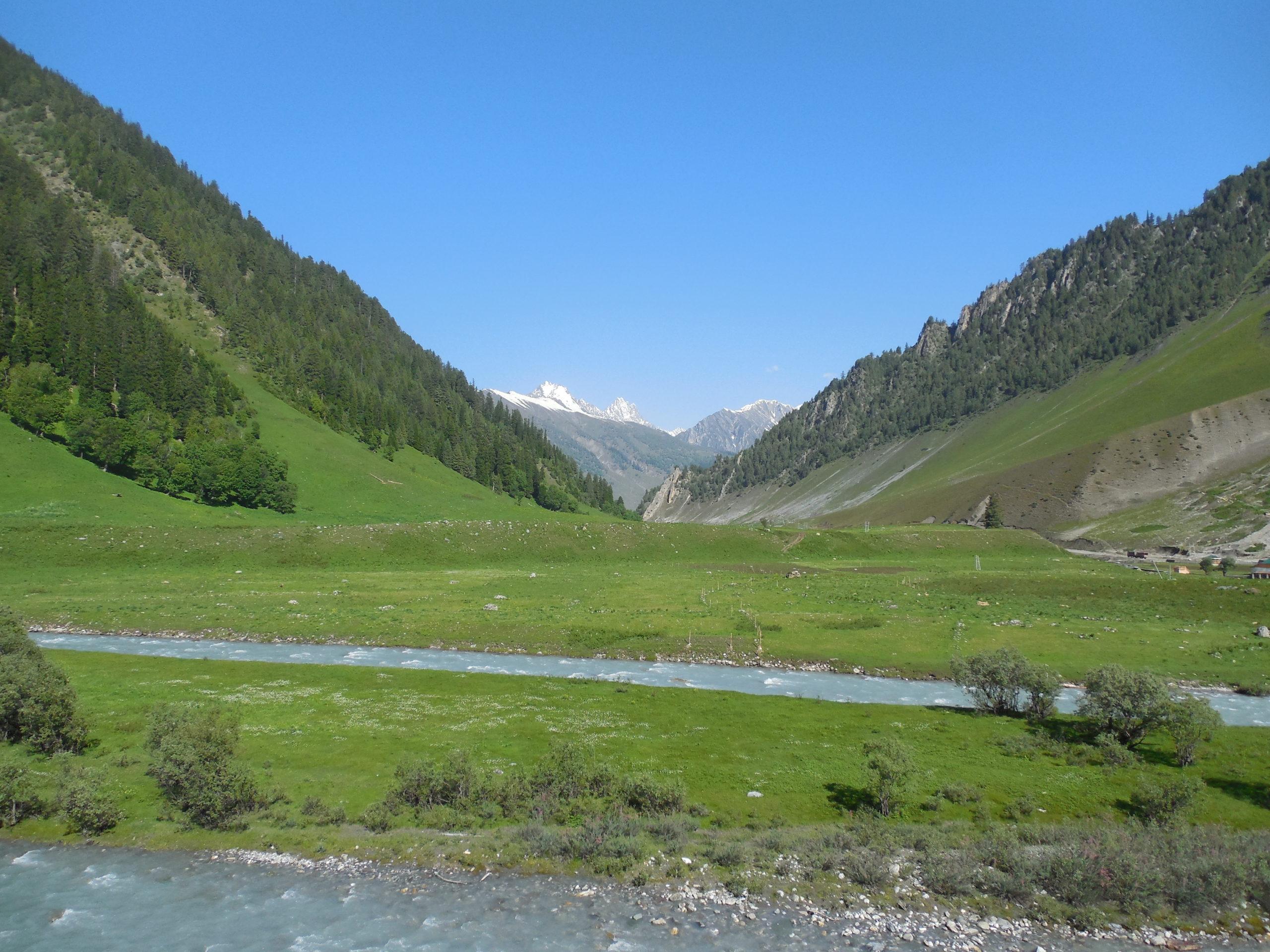 grüne Täler in Srinagar