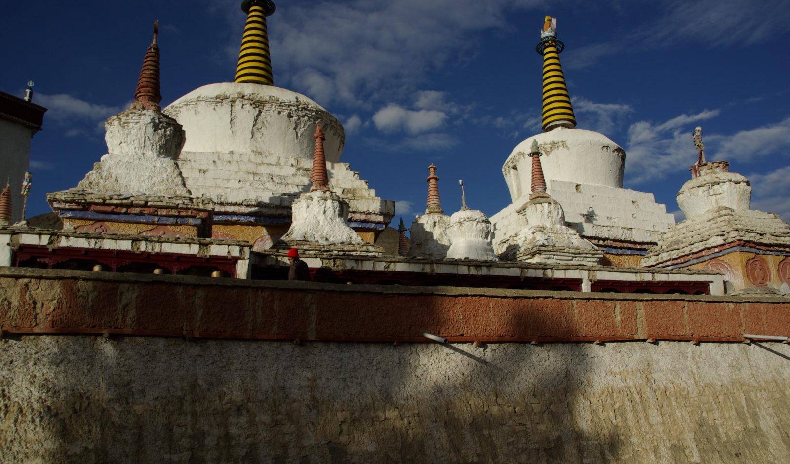 Wasp stupas